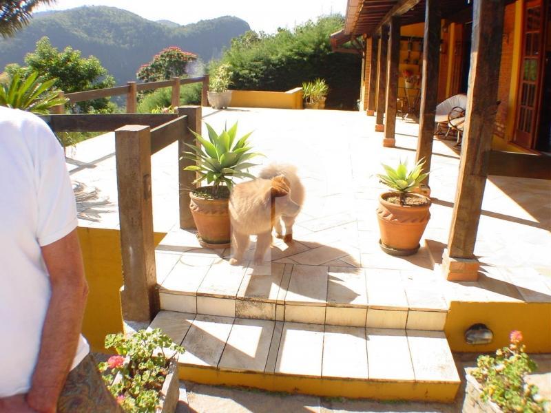 Casa para Alugar em Araras, Petrópolis - Foto 10