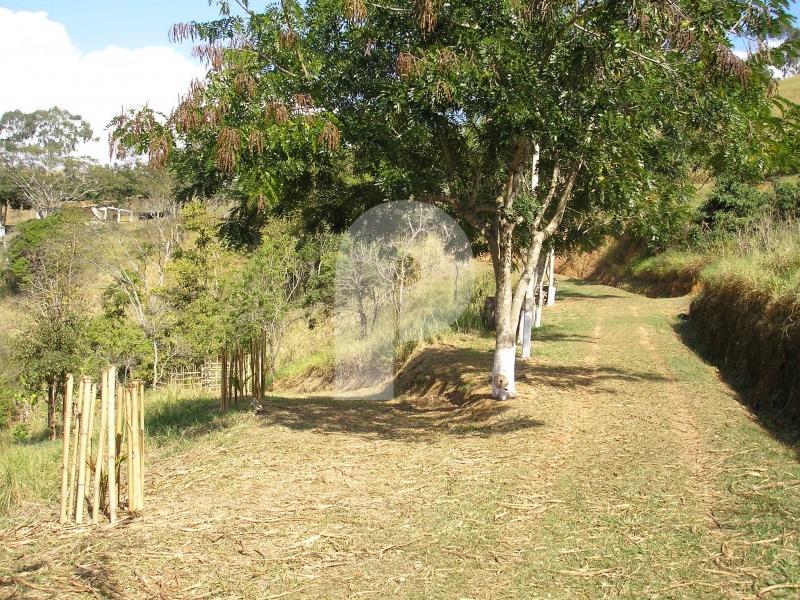 Fazenda / Sítio à venda em Centro, Três Rios - Foto 3