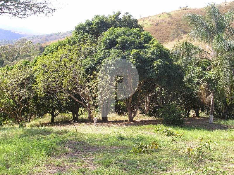 Fazenda / Sítio à venda em Centro, Três Rios - Foto 5