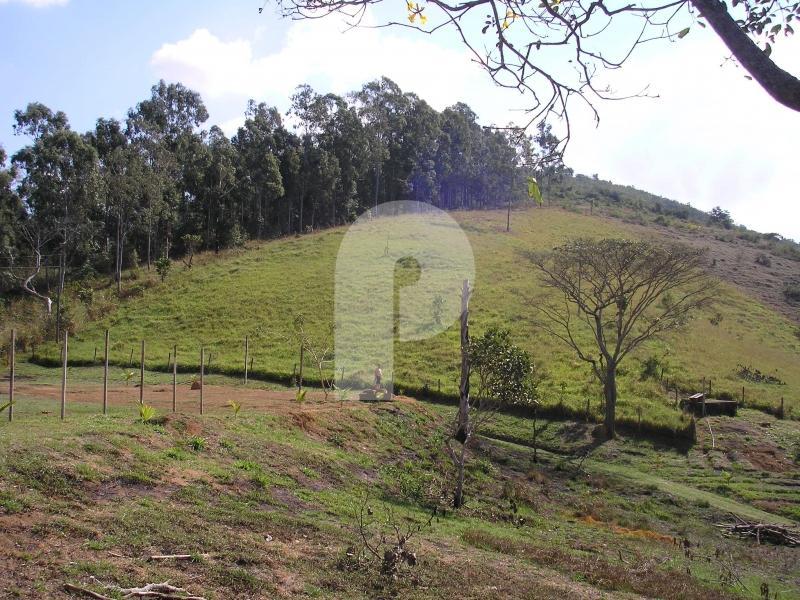 Fazenda / Sítio à venda em Centro, Três Rios - Foto 8