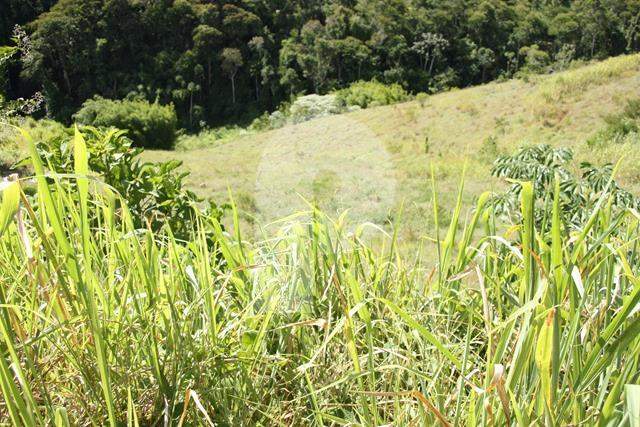 Terreno Residencial à venda em Centro, Areal - Foto 1