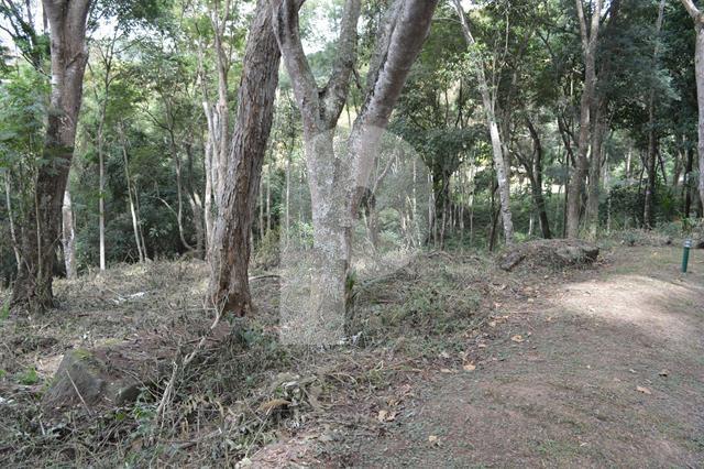 Terreno Residencial à venda em Próximo à Itaipava , Petrópolis - RJ - Foto 3