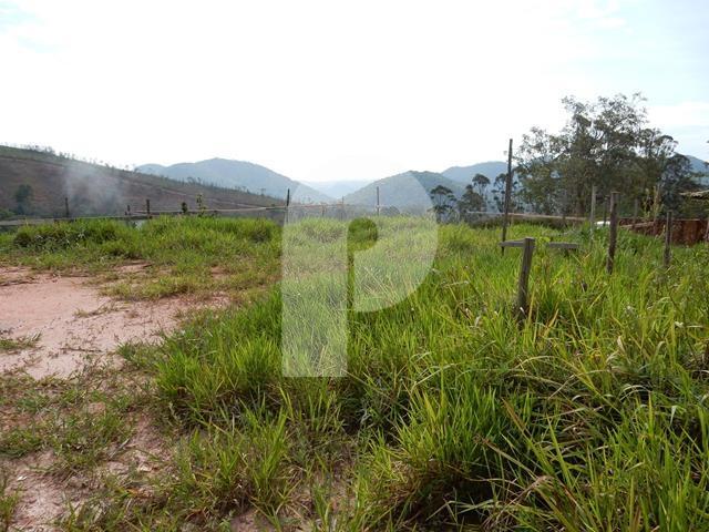 Terreno Residencial à venda em Pedro do Rio, Petrópolis - RJ - Foto 6