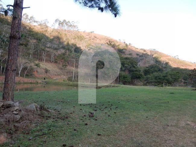 Fazenda / Sítio à venda em Centro, Areal - Foto 3