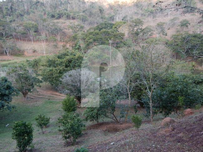Fazenda / Sítio à venda em Centro, Areal - Foto 16