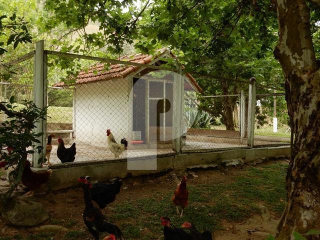 Fazenda / Sítio à venda em Posse, Petrópolis - RJ - Foto 13