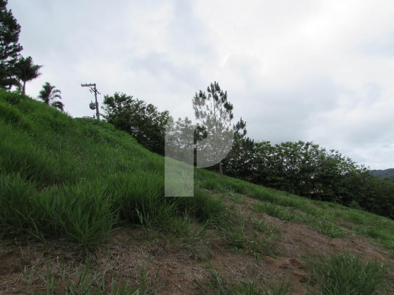 Terreno Residencial à venda em Araras, Petrópolis - RJ - Foto 4