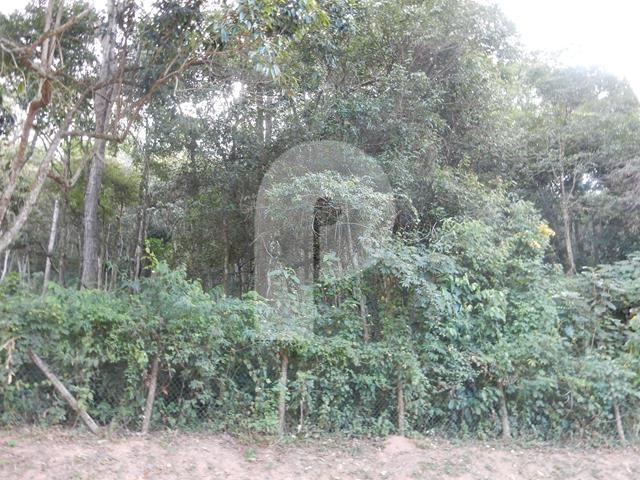 Terreno Residencial à venda em Próximo à Itaipava , Petrópolis - RJ - Foto 2