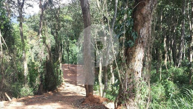 Terreno Residencial à venda em Corrêas, Petrópolis - RJ - Foto 2