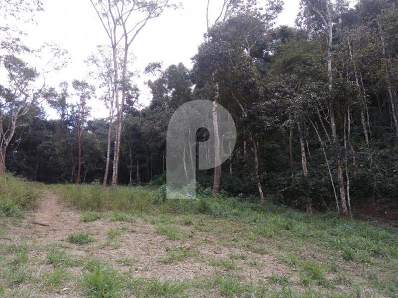 Foto - [8445] Terreno Residencial Petrópolis, Itaipava
