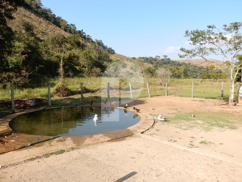 Foto - [8478] Fazenda / Sítio Petrópolis, Secretário