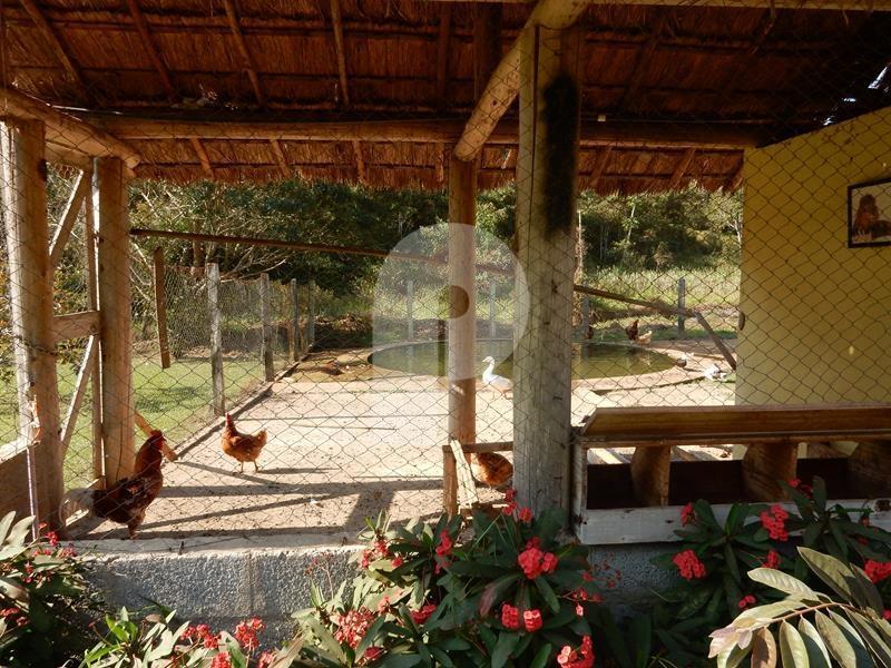Fazenda / Sítio à venda em Secretário, Petrópolis - Foto 18