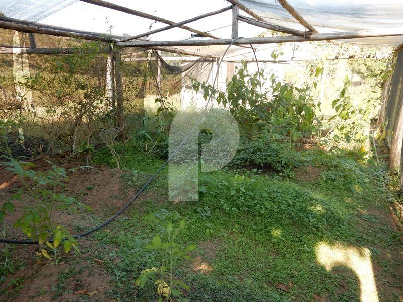 Fazenda / Sítio à venda em Secretário, Petrópolis - Foto 21
