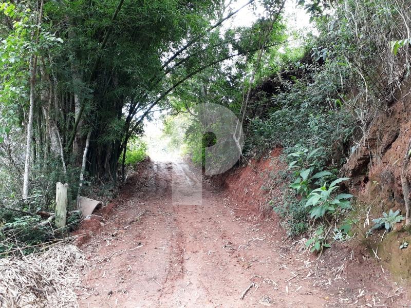 Terreno Residencial à venda em Itaipava, Petrópolis - RJ - Foto 25