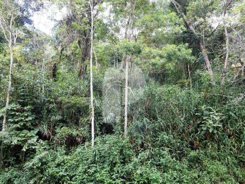 Terreno Residencial à venda em Samambaia, Petrópolis - Foto 7