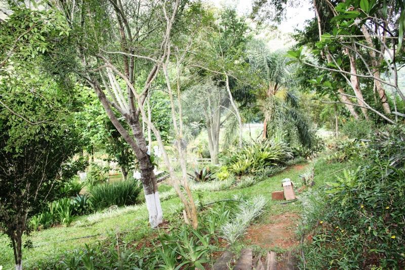 Fazenda / Sítio à venda em Vale das Videiras, Petrópolis - RJ - Foto 8