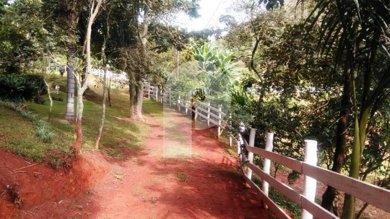 Fazenda / Sítio à venda em Vale das Videiras, Petrópolis - RJ - Foto 13