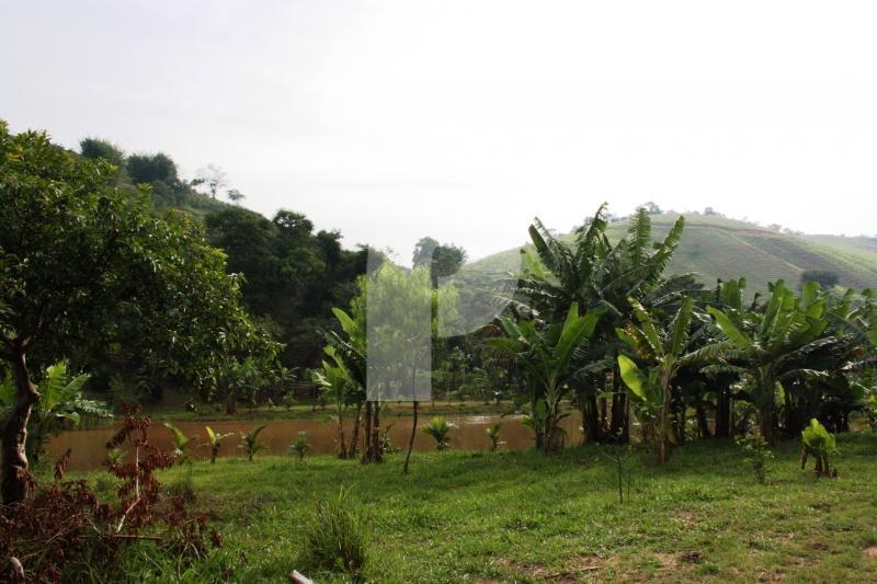 Fazenda / Sítio à venda em Vale das Videiras, Petrópolis - RJ - Foto 28
