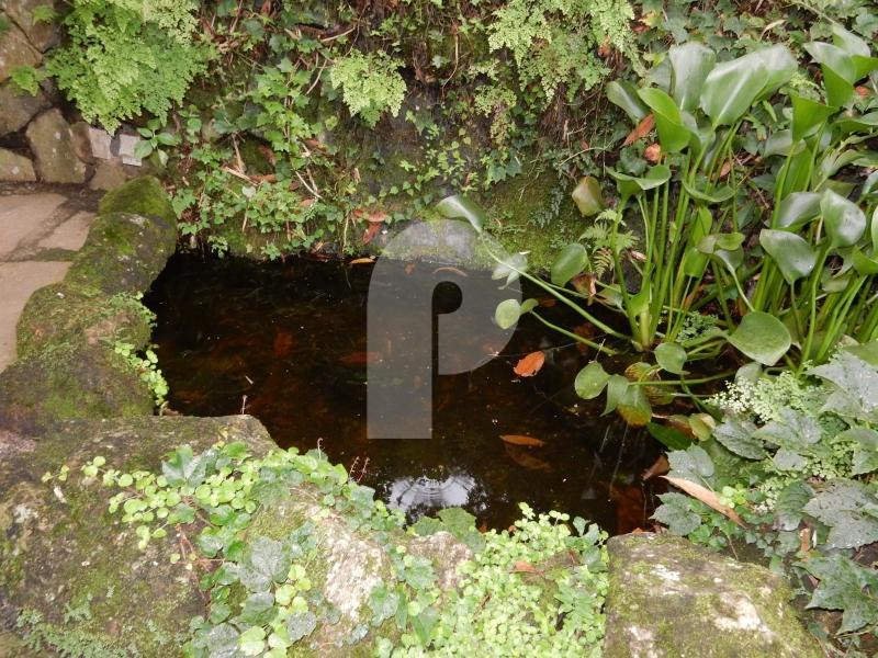Foto - [9037] Casa Petrópolis, Fazenda Inglesa