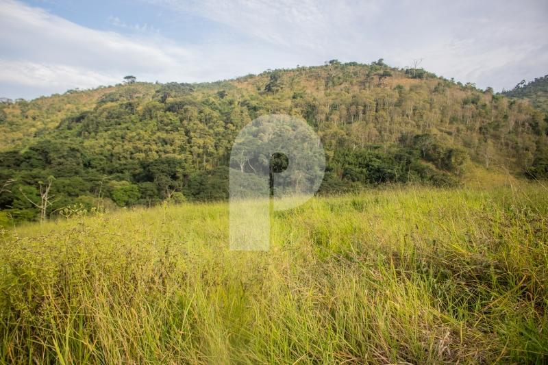 Terreno Residencial à venda em Secretário, Petrópolis - RJ - Foto 2