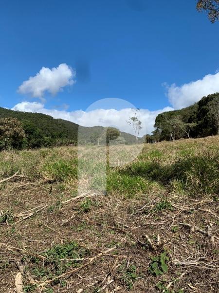 Fazenda / Sítio à venda em Posse, Petrópolis - RJ - Foto 10