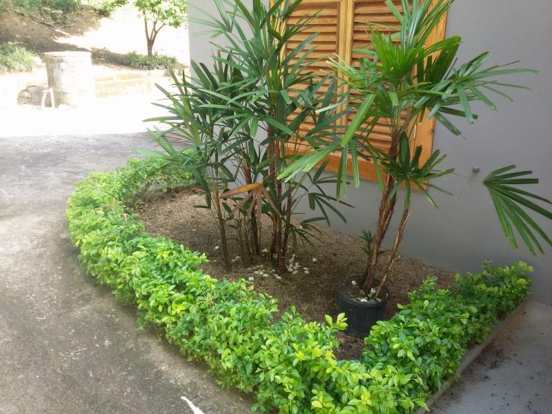 Casa para Alugar em Mosela, Petrópolis - Foto 2