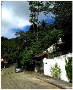 Casa para Alugar em Quarteirão Ingelheim, Petrópolis - Foto 2