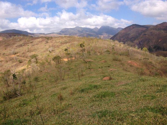 Terreno Comercial à venda em Centro, Areal - Foto 2