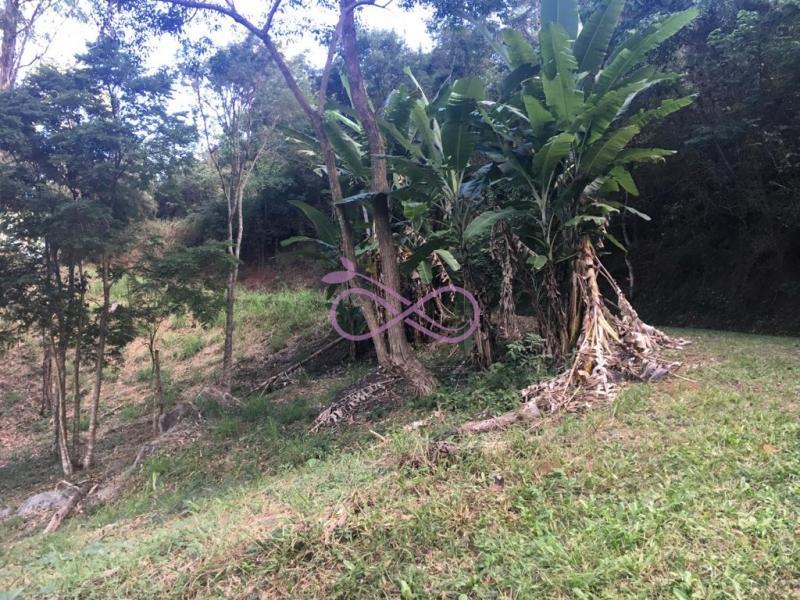 Fazenda / Sítio em Petrópolis Pedro do Rio