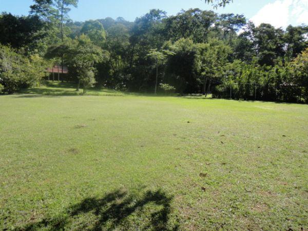 Fazenda / Sítio à venda em Pedro do Rio, Petrópolis - RJ - Foto 10
