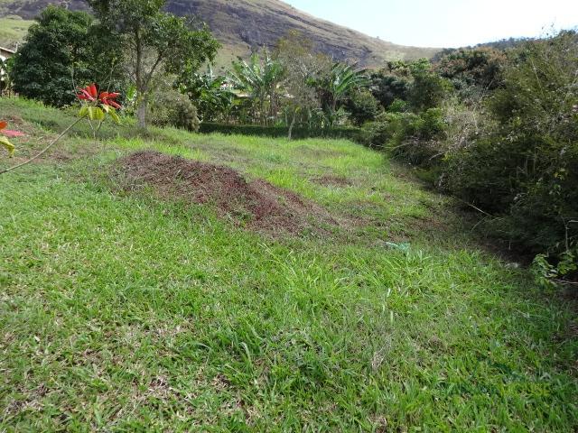 Fazenda / Sítio à venda em Posse, Petrópolis - RJ - Foto 2