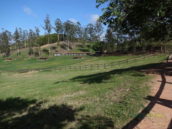 Fazenda / Sítio à venda em Centro, Areal - Foto 11