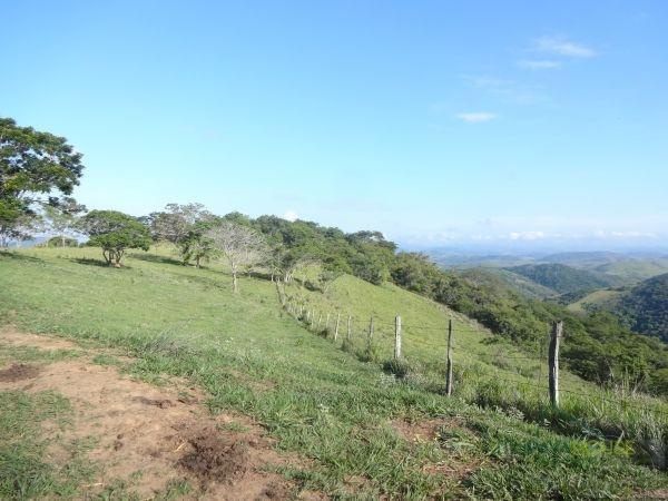 Fazenda / Sítio à venda em Centro, Areal - RJ - Foto 3
