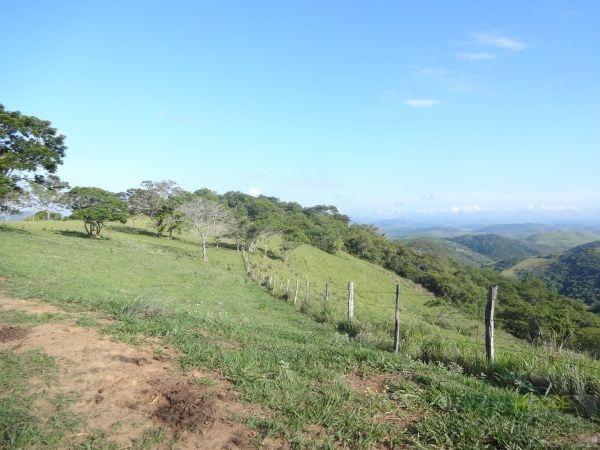 Fazenda / Sítio à venda em Centro, Areal - Foto 5