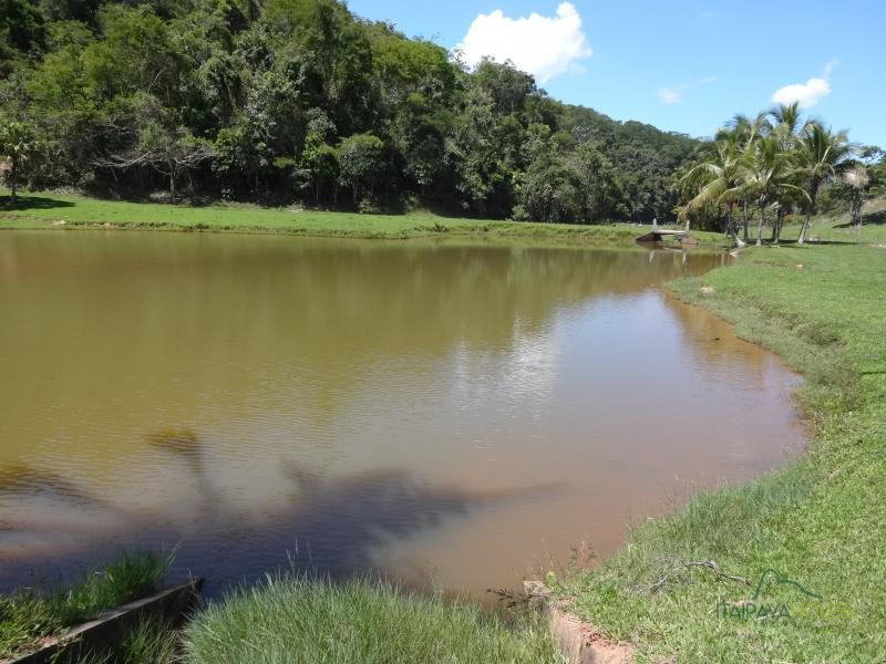 Fazenda / Sítio à venda em Centro, Areal - RJ - Foto 7