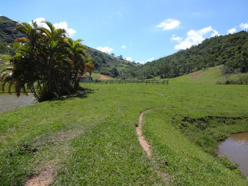 Fazenda / Sítio à venda em Centro, Areal - RJ - Foto 6