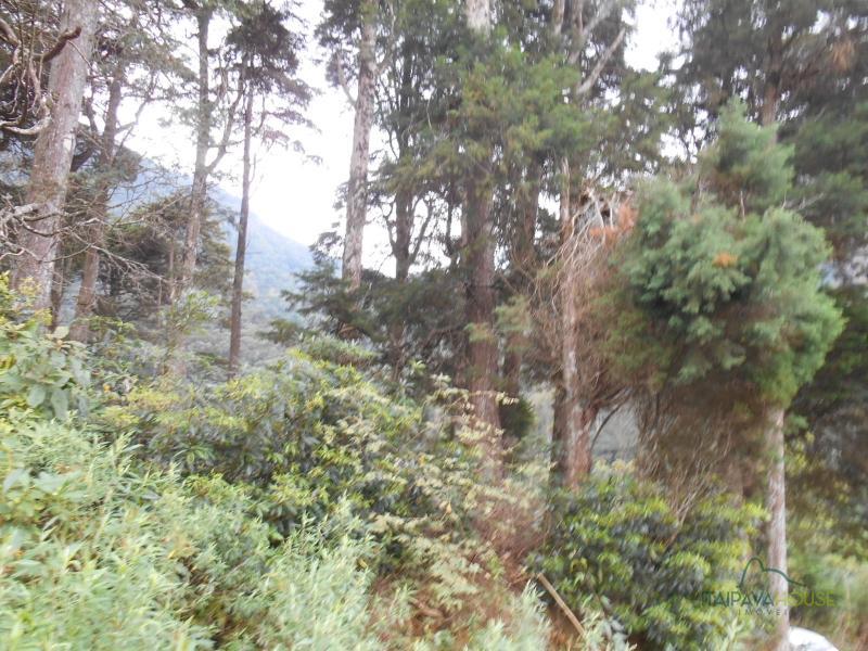 Terreno Residencial à venda em Centro, Petrópolis - Foto 5
