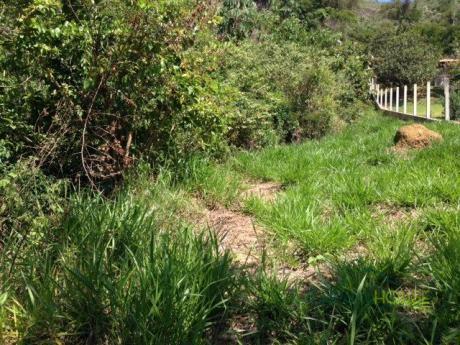 Terreno Residencial à venda em Samambaia, Petrópolis - Foto 2