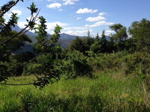 Terreno Residencial à venda em Samambaia, Petrópolis - Foto 3