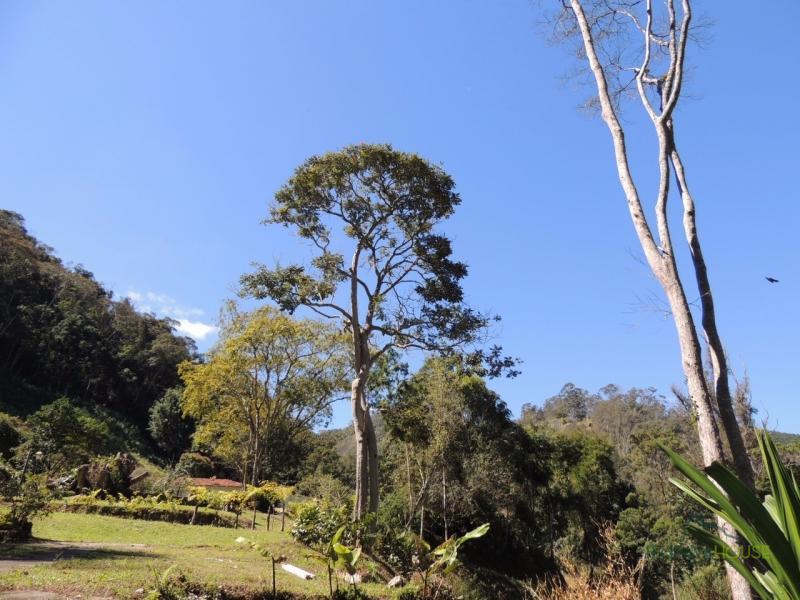 Terreno Residencial à venda em Itaipava, Petrópolis - RJ - Foto 15