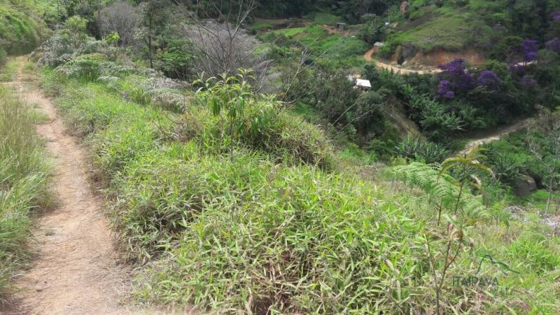 Fazenda / Sítio à venda em Itaipava, Petrópolis - Foto 4
