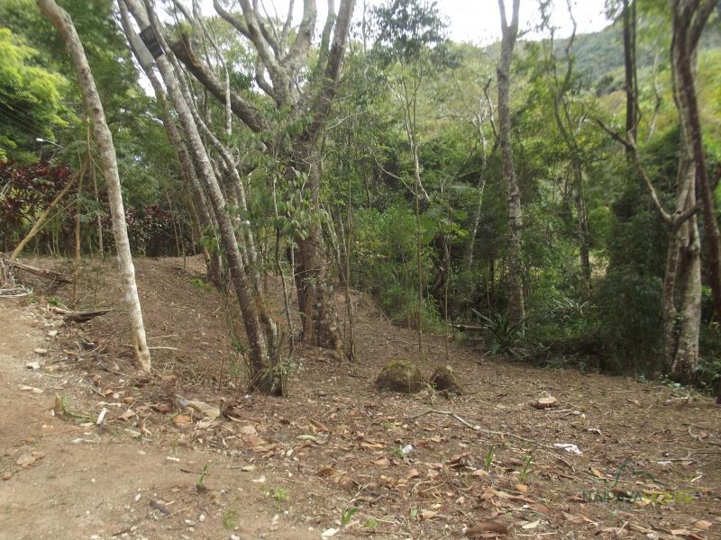 Terreno Residencial à venda em Vale das Videiras, Petrópolis - Foto 8