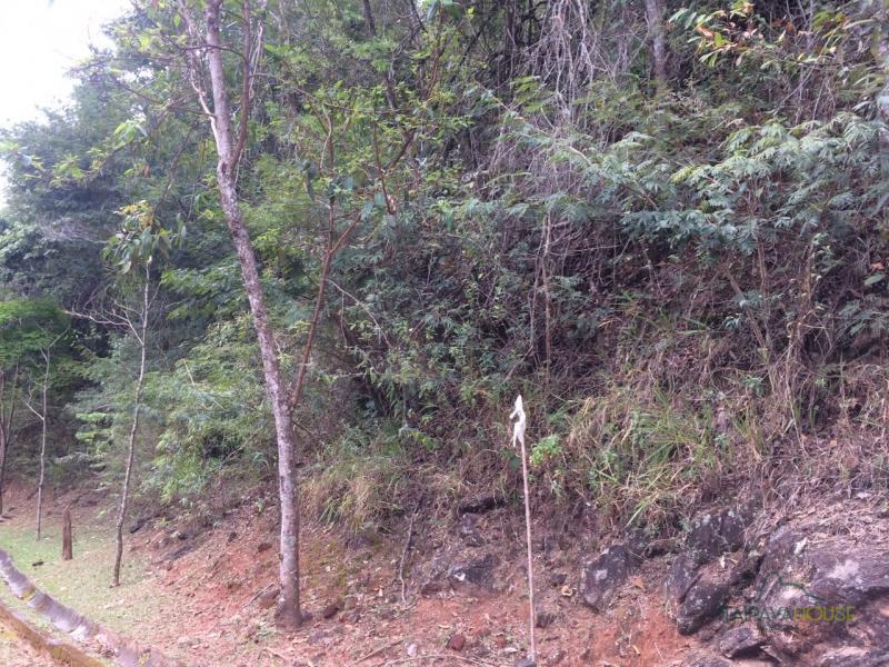 Terreno Residencial à venda em Araras, Petrópolis - RJ - Foto 10