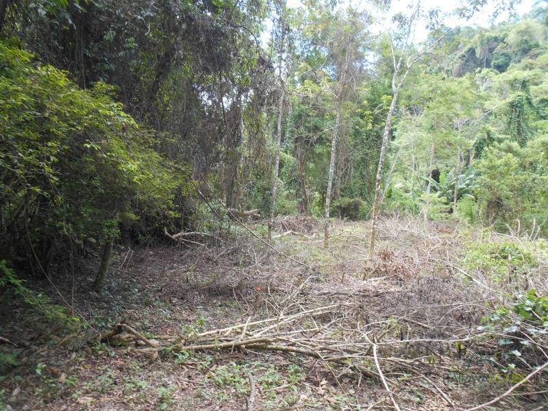 Terreno Residencial à venda em Nogueira, Petrópolis - RJ - Foto 17