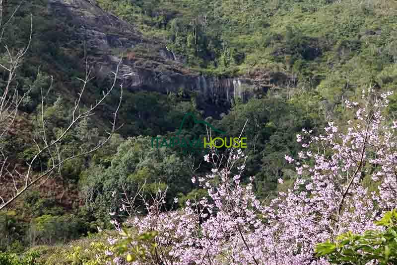 Casa à venda ,  para Alugar em Araras, Petrópolis - Foto 38