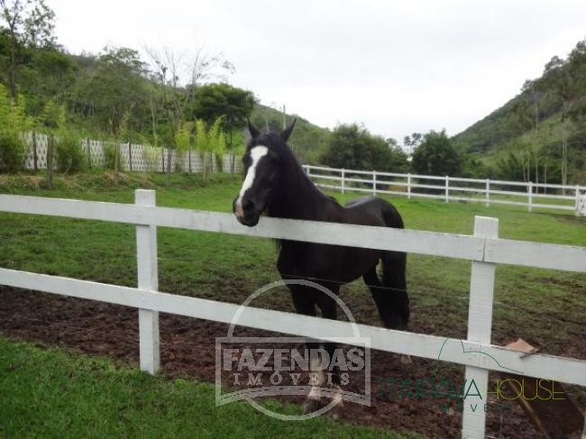 Fazenda / Sítio à venda em Fagundes, Petrópolis - Foto 9