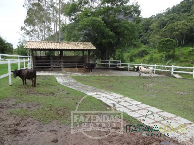 Foto - [71] Fazenda / Sítio Petrópolis, Fagundes
