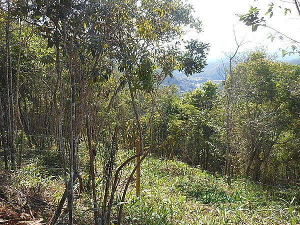Foto - [385] Terreno Residencial Petrópolis, Itaipava