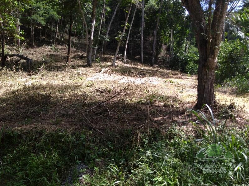 Terreno Residencial à venda em Itaipava, Petrópolis - Foto 8
