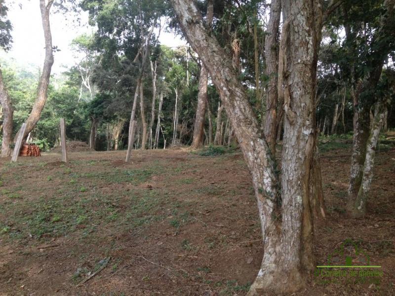 Fazenda / Sítio à venda em Vale das Videiras, Petrópolis - RJ - Foto 9